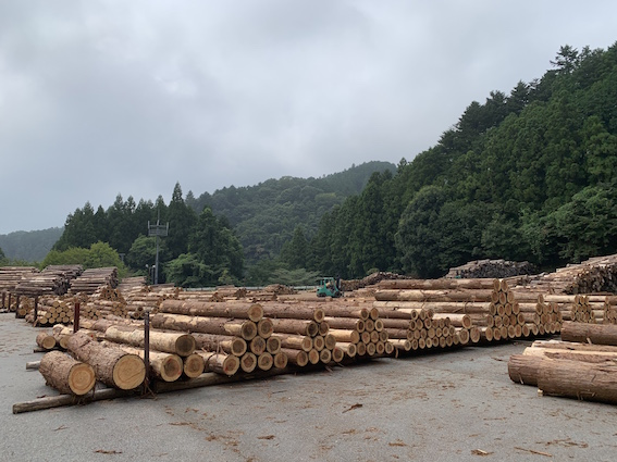 200428J多摩産材木材市場の様子.jpg